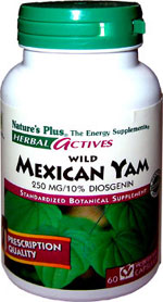 Mexican Wild Yam Facts and Information